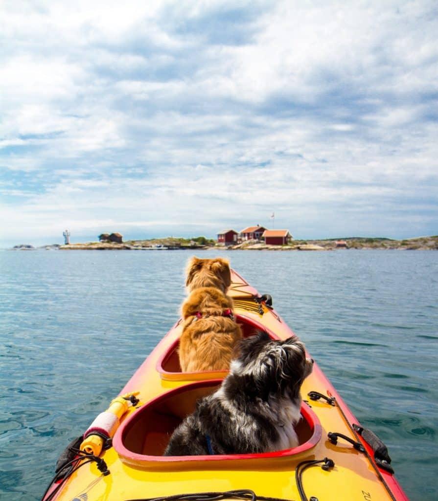 Sit In Kayaks